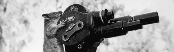 camera-blog