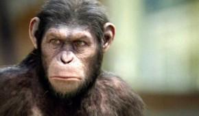 el-origen-del-planeta-de-los-simios-popchild-2012-mini